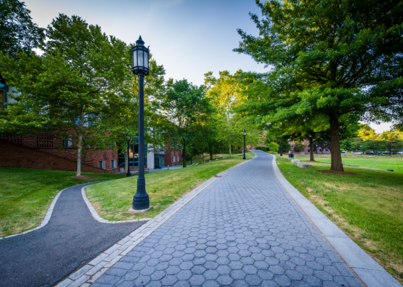 #55. Trinity College - Connecticut