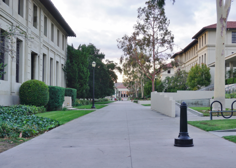 #38. Occidental College