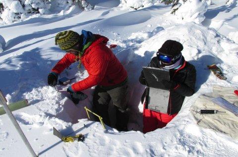CUL_Map_Citizen Science_Arctic's Edge