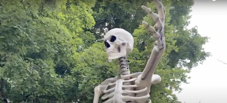 Skeleton in Raleigh