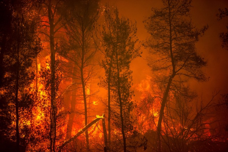 Wildfires on Evia island in Greece