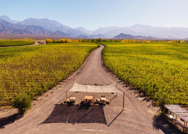 Argentina - Uco Valley, Mendoza