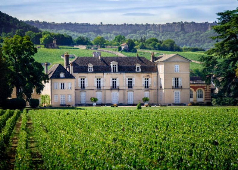 France - Chateau de Meursault, Burgundy