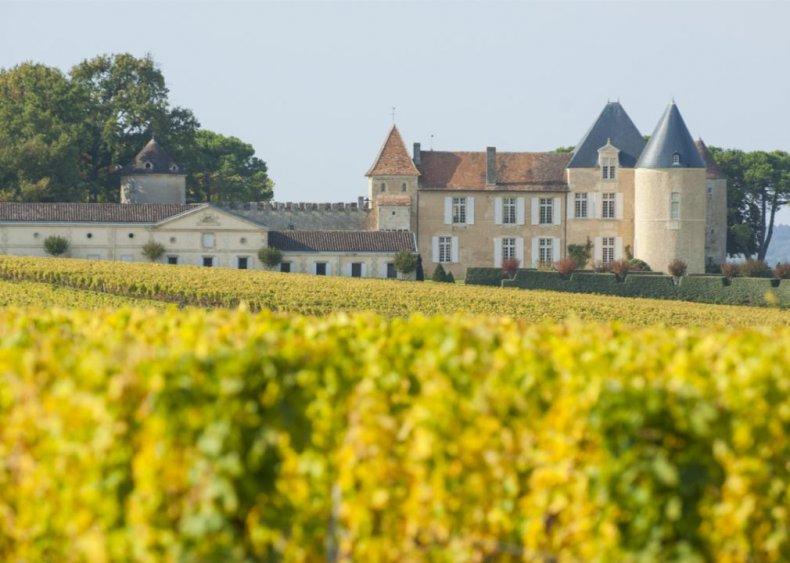 France - Chateau d'Yquem, Sauternes