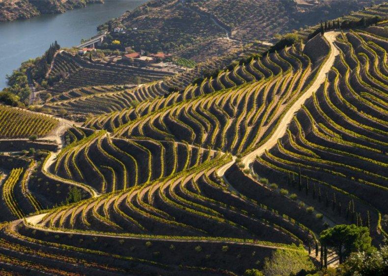 Portugal - Douro River Valley