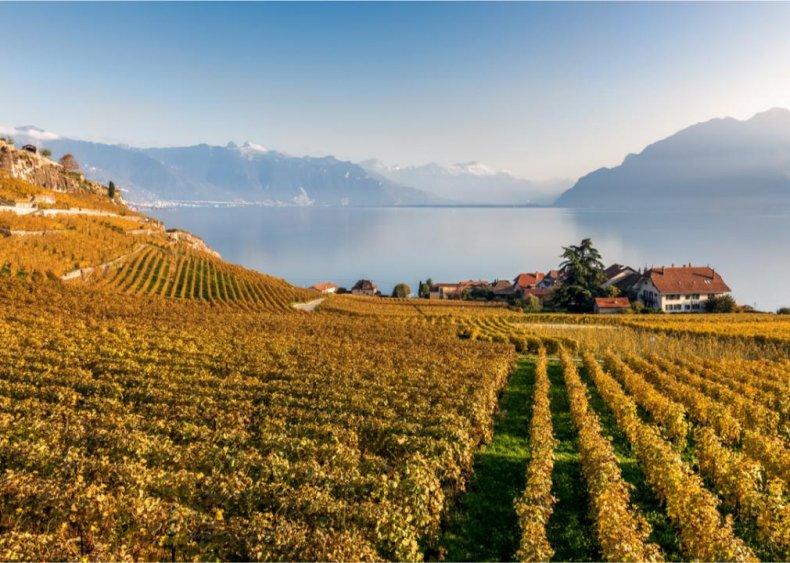 Switzerland - Lavaux Region