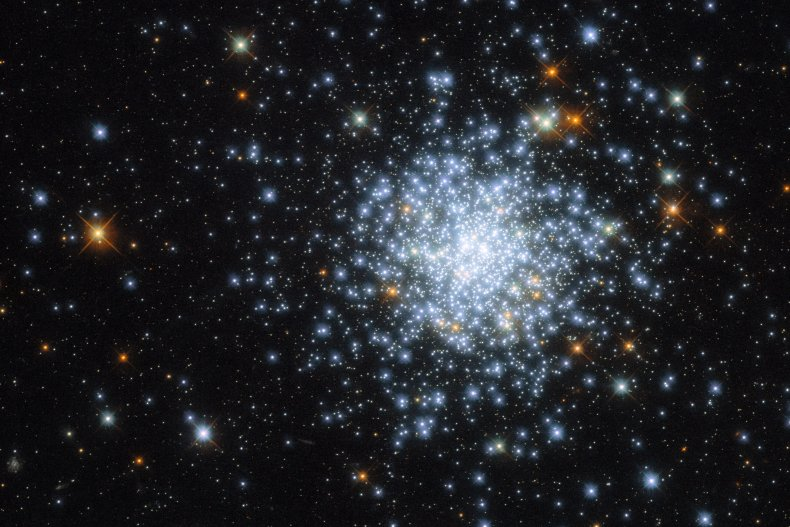 The open cluster known as NGC 2164