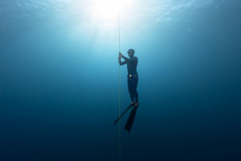 CUL Map Free diver