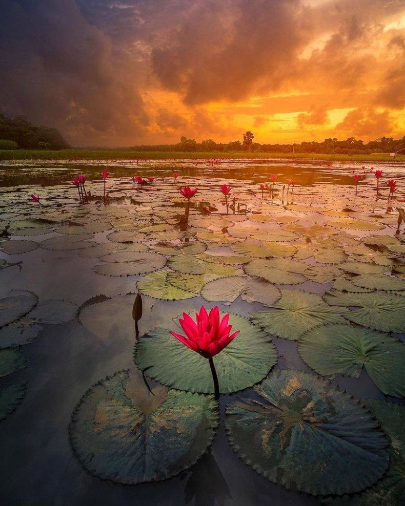 Bangladesh, Water