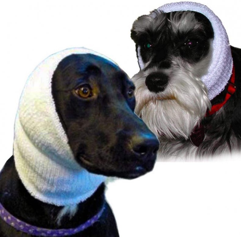 best dog anxiety products 7