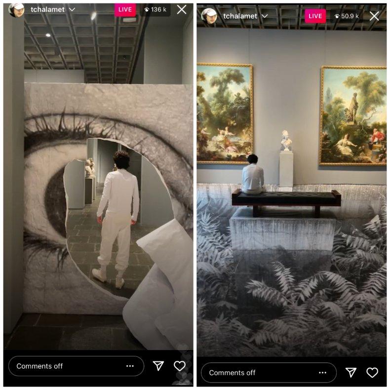 Timothée Chalamet's Instagram Live
