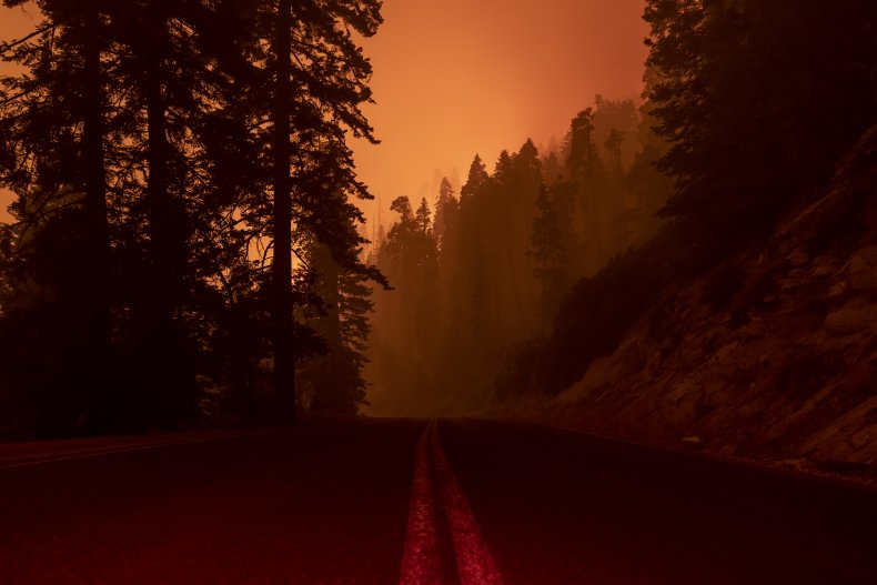 Sequoia National Forest Fires
