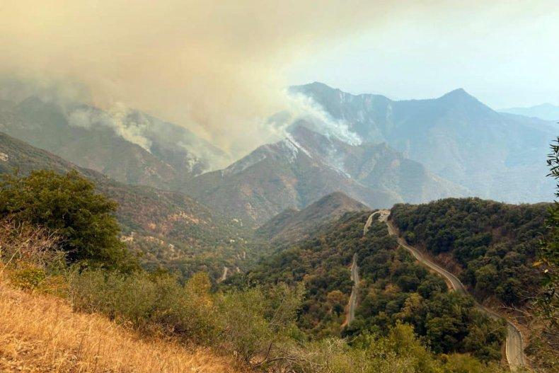 Wildfires Sequoia