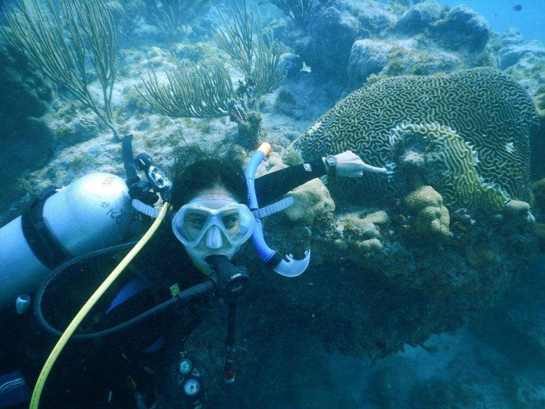 Stony Coral Tissue Loss