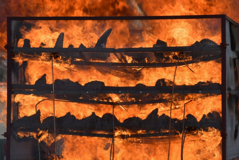 Burning rhino horns