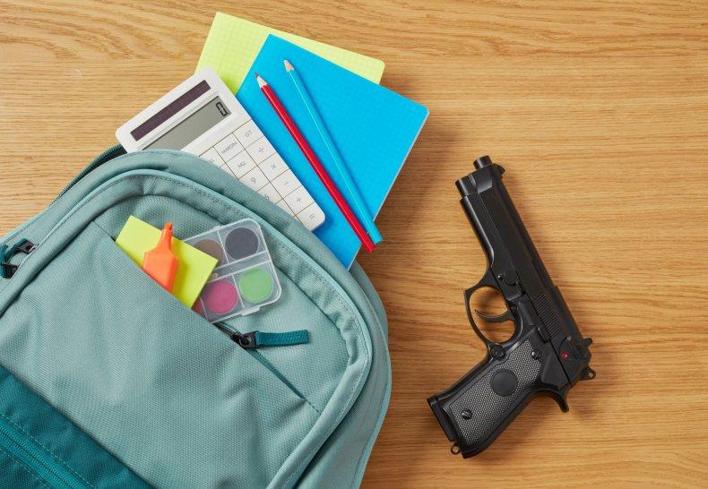 File photo of gun in a bag.