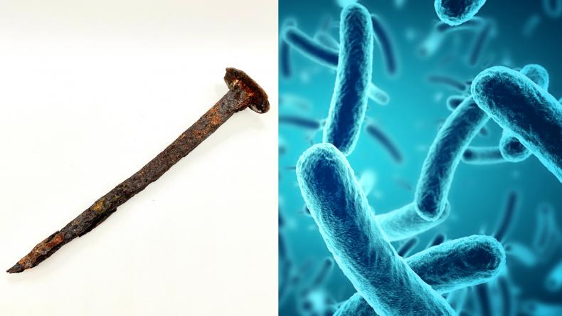 Metal eating bacteria