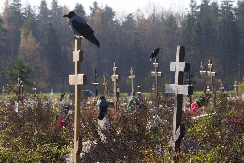 COVID-19 Cemetery