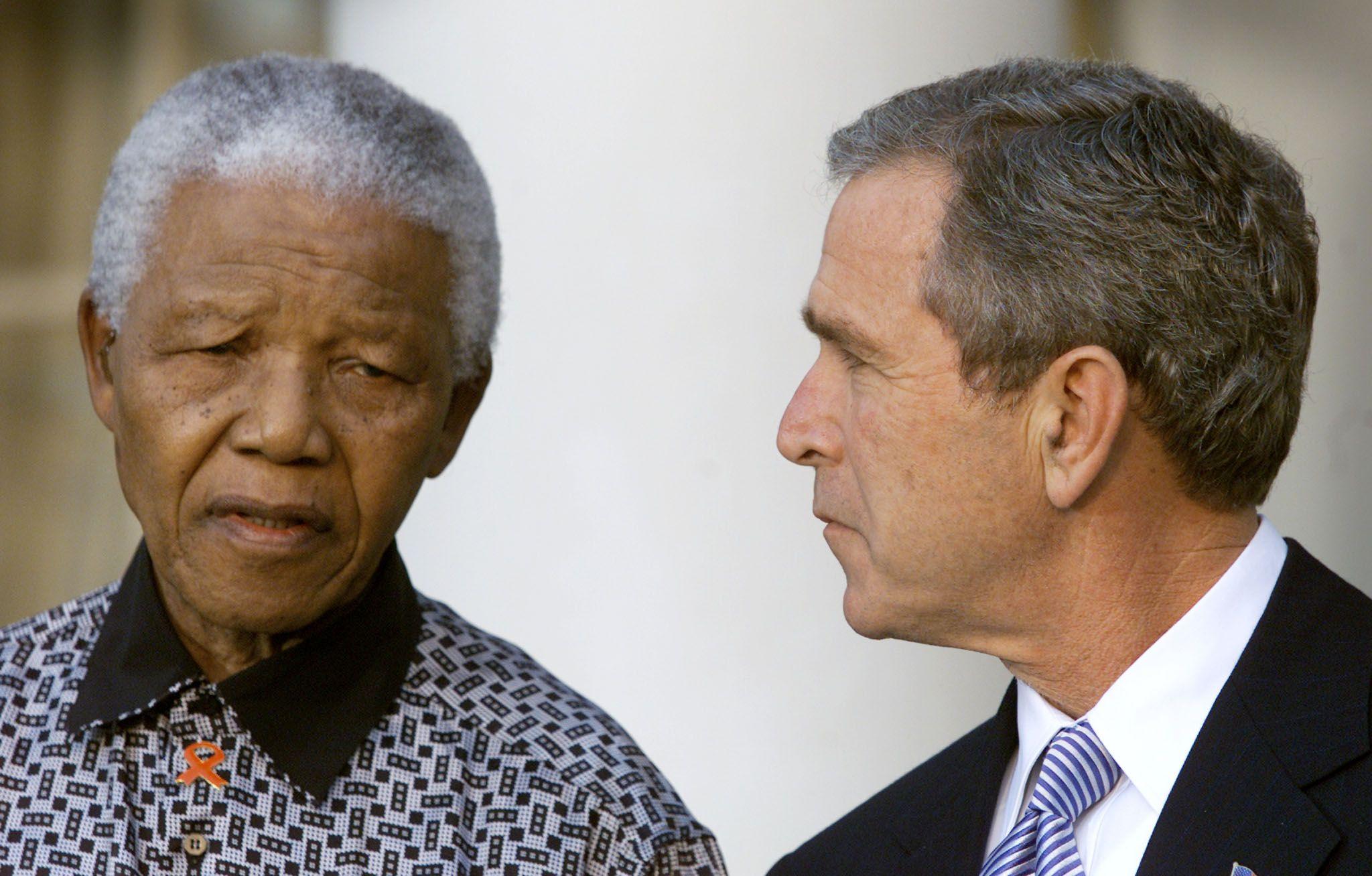Mandela Bush