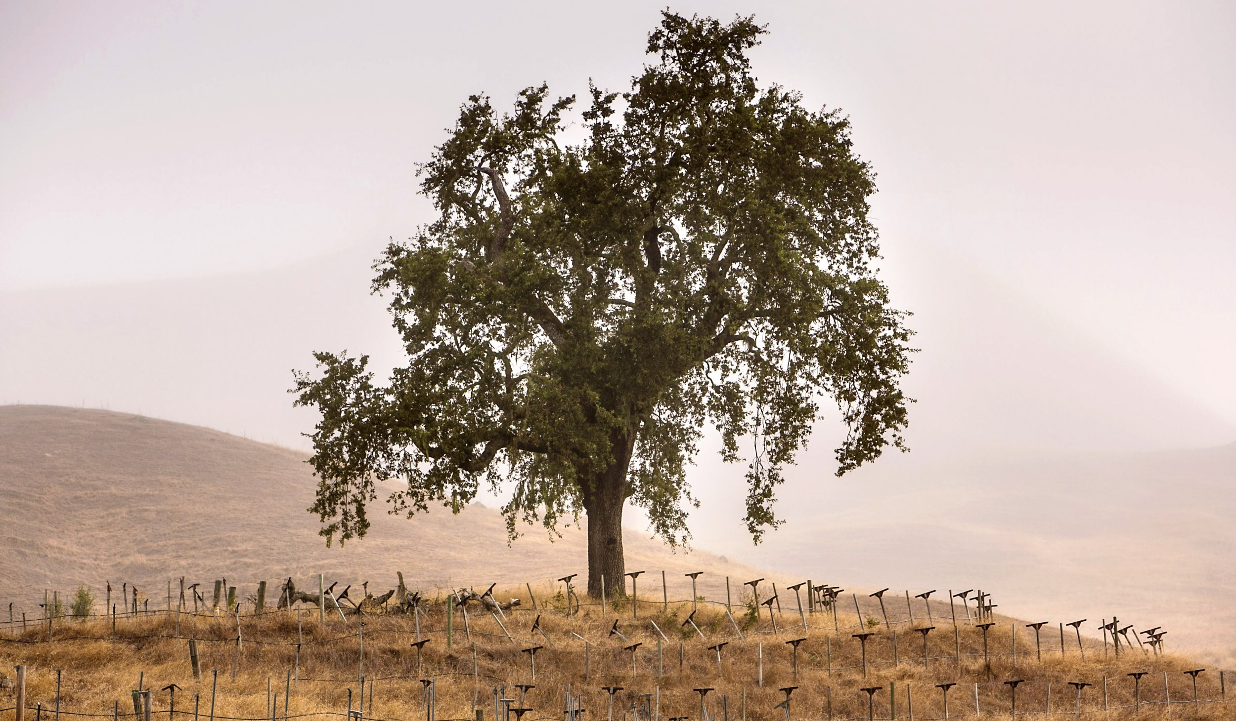 2.6_california_drought2
