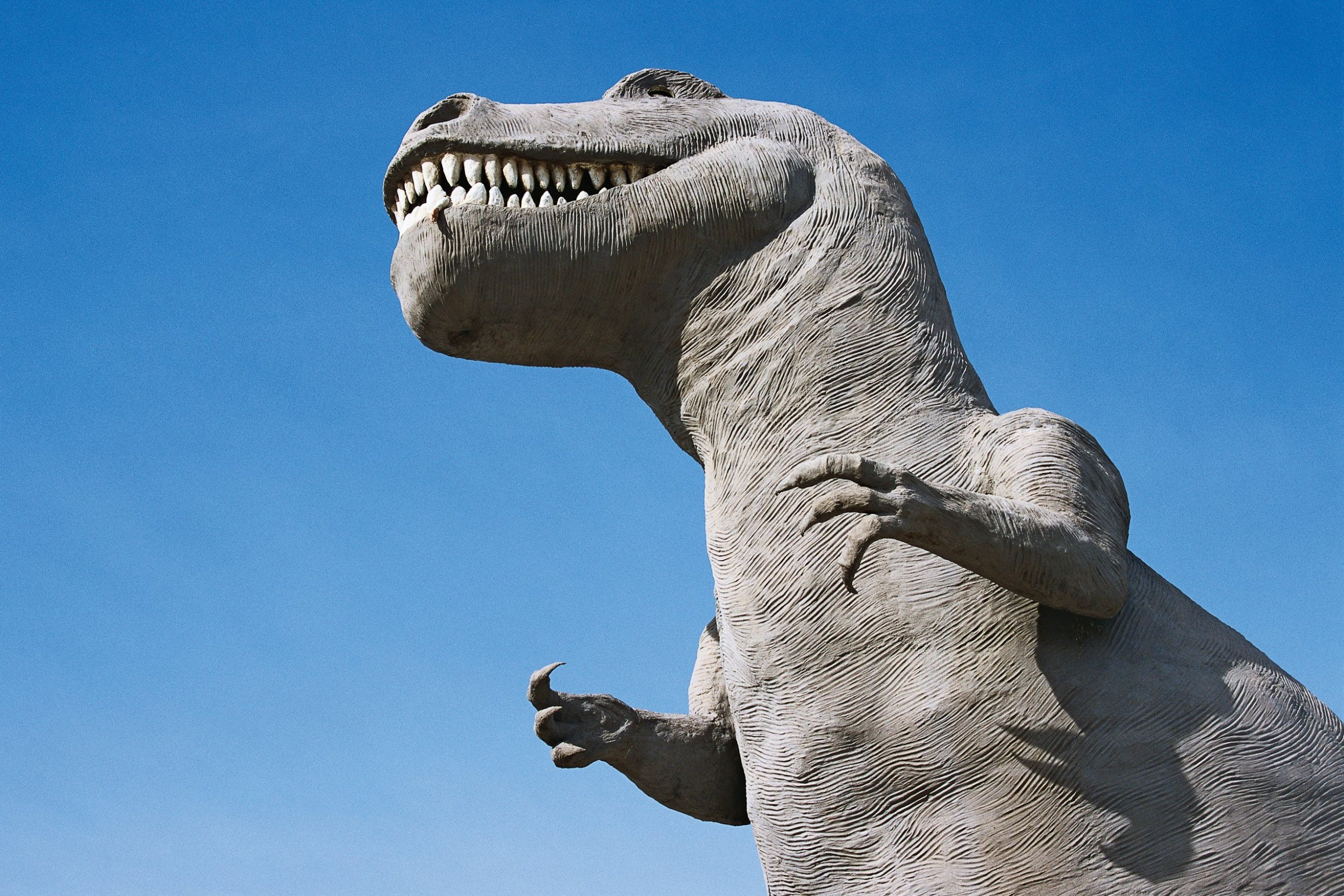 dickey-bw0122-tyrannosaurus-sex-tease