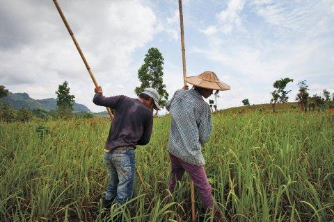 071013-Global Post-fe0425-Burma-Tease8