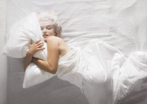 1.17_LS0503_Marilyn4