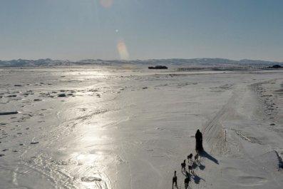 3.7_DT0210_Iditarod