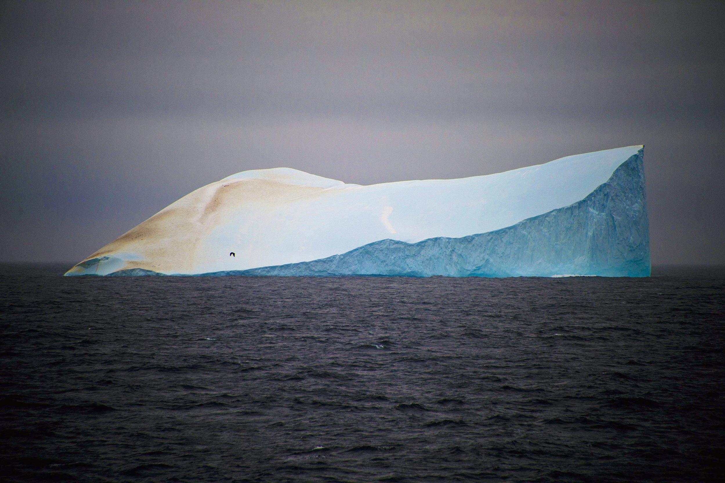 4.21_Antarctic.jpg