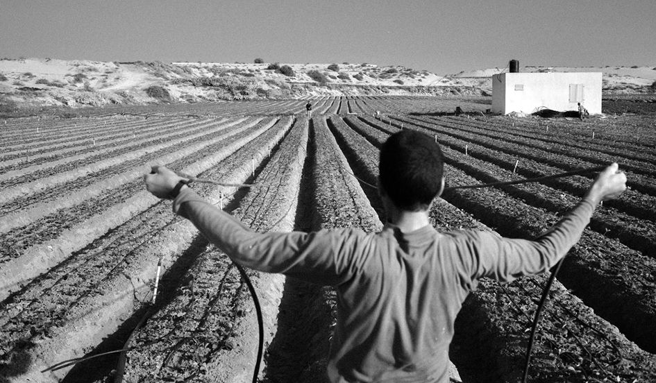 photo essay farming on the frontlines in gaza