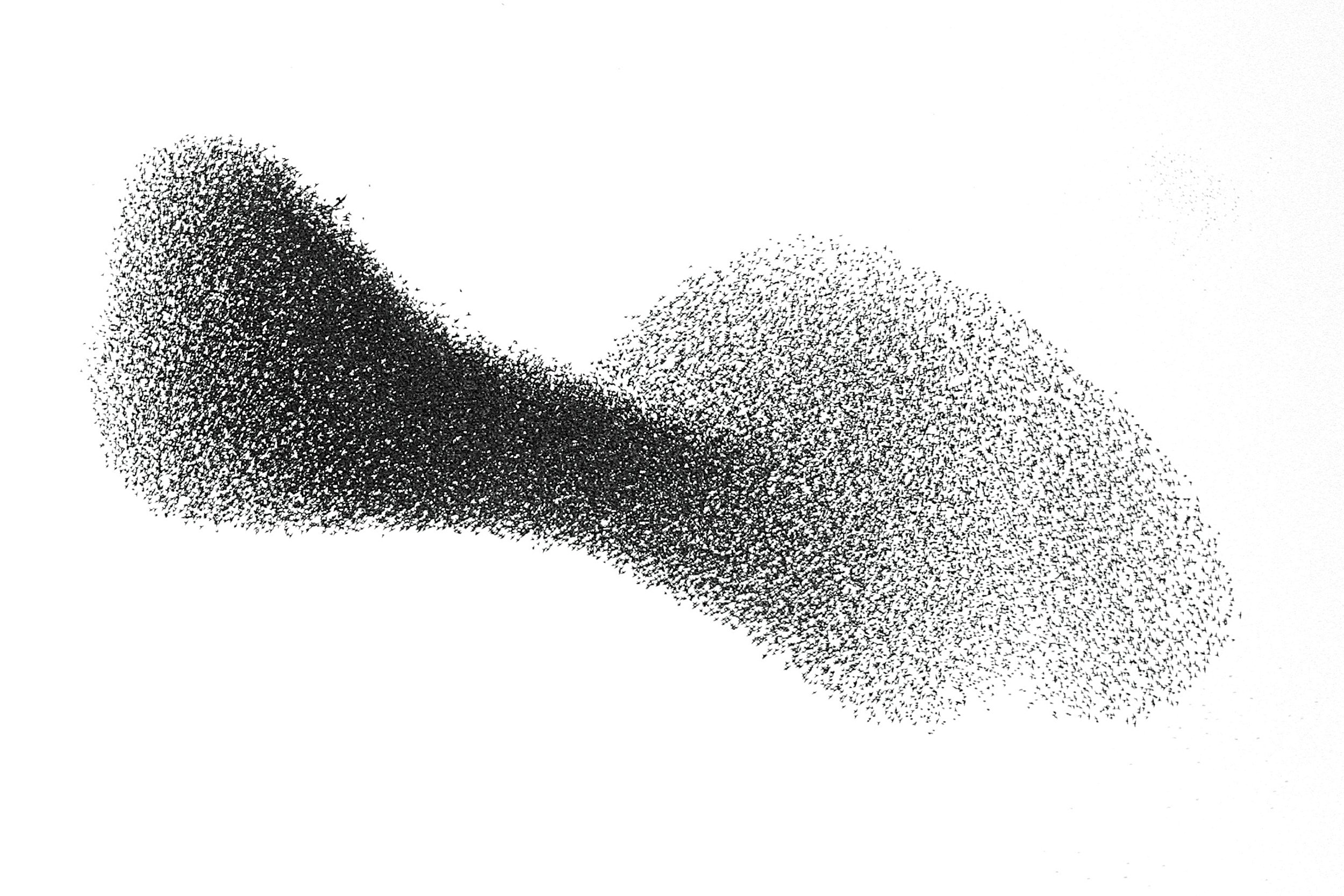 5.16_FE0220_Swarms_01
