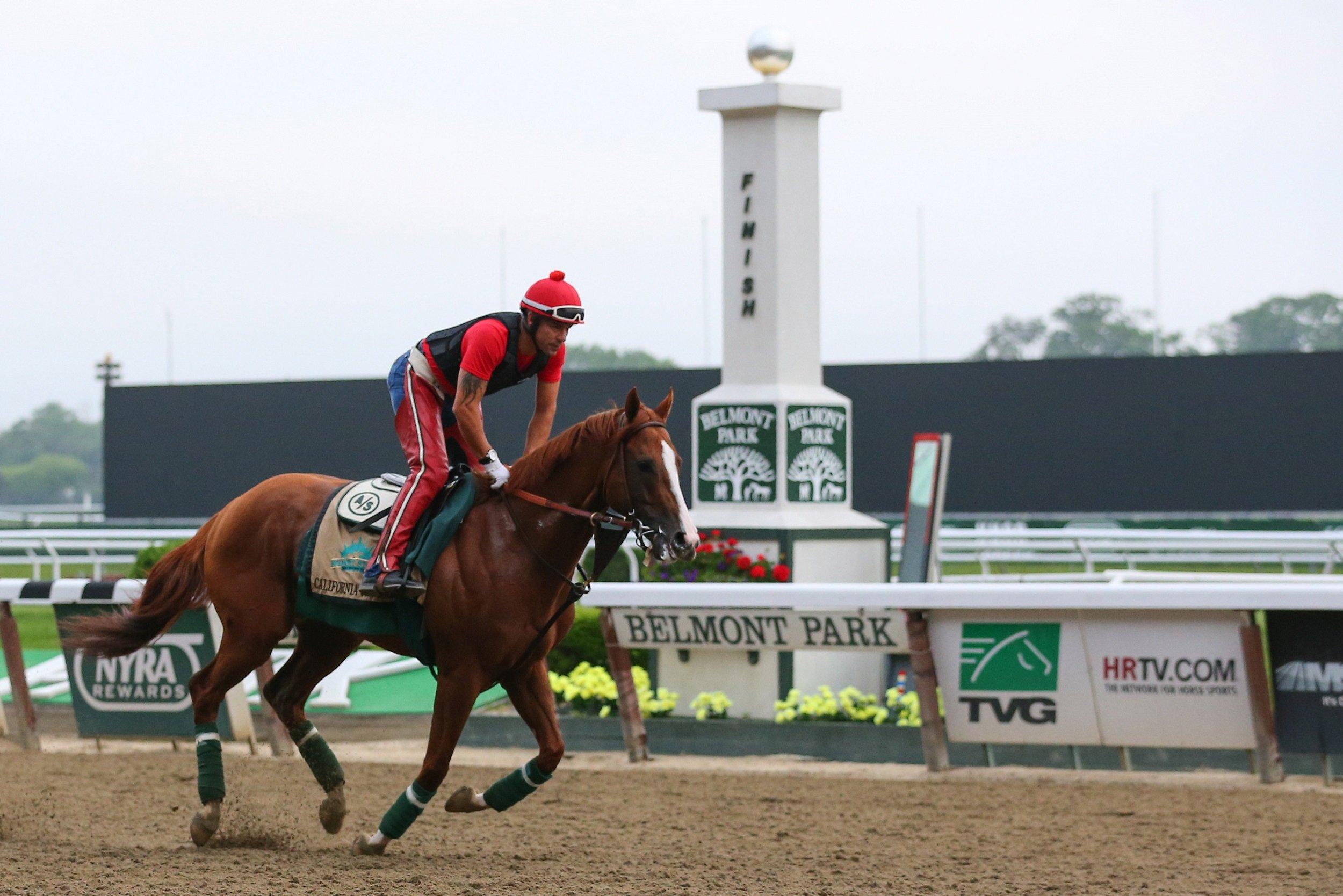 California Chrome prepares for the Belmont Stakes