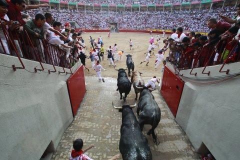 Bulls enter the bullring at San Fermin