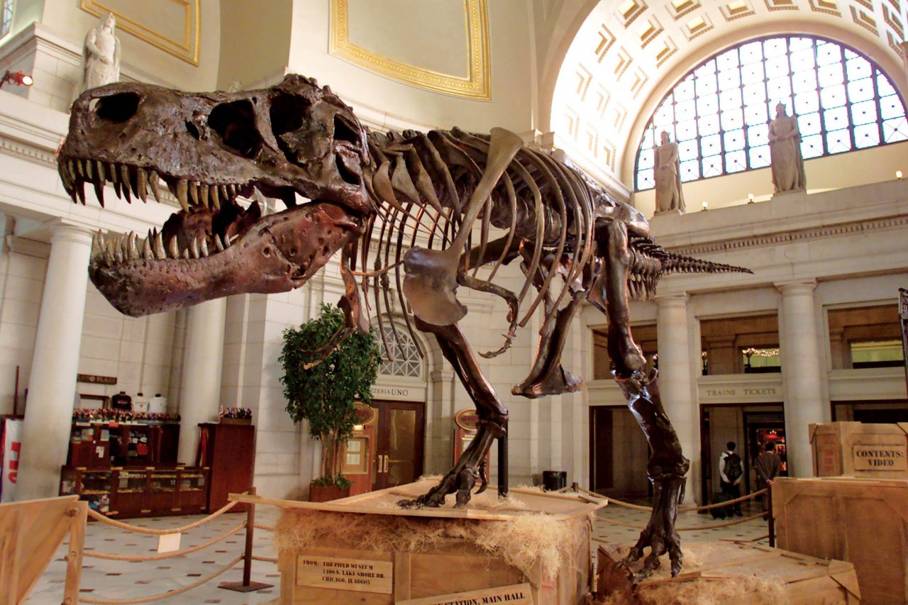 7_18_DT0104_Dinosaurs_03