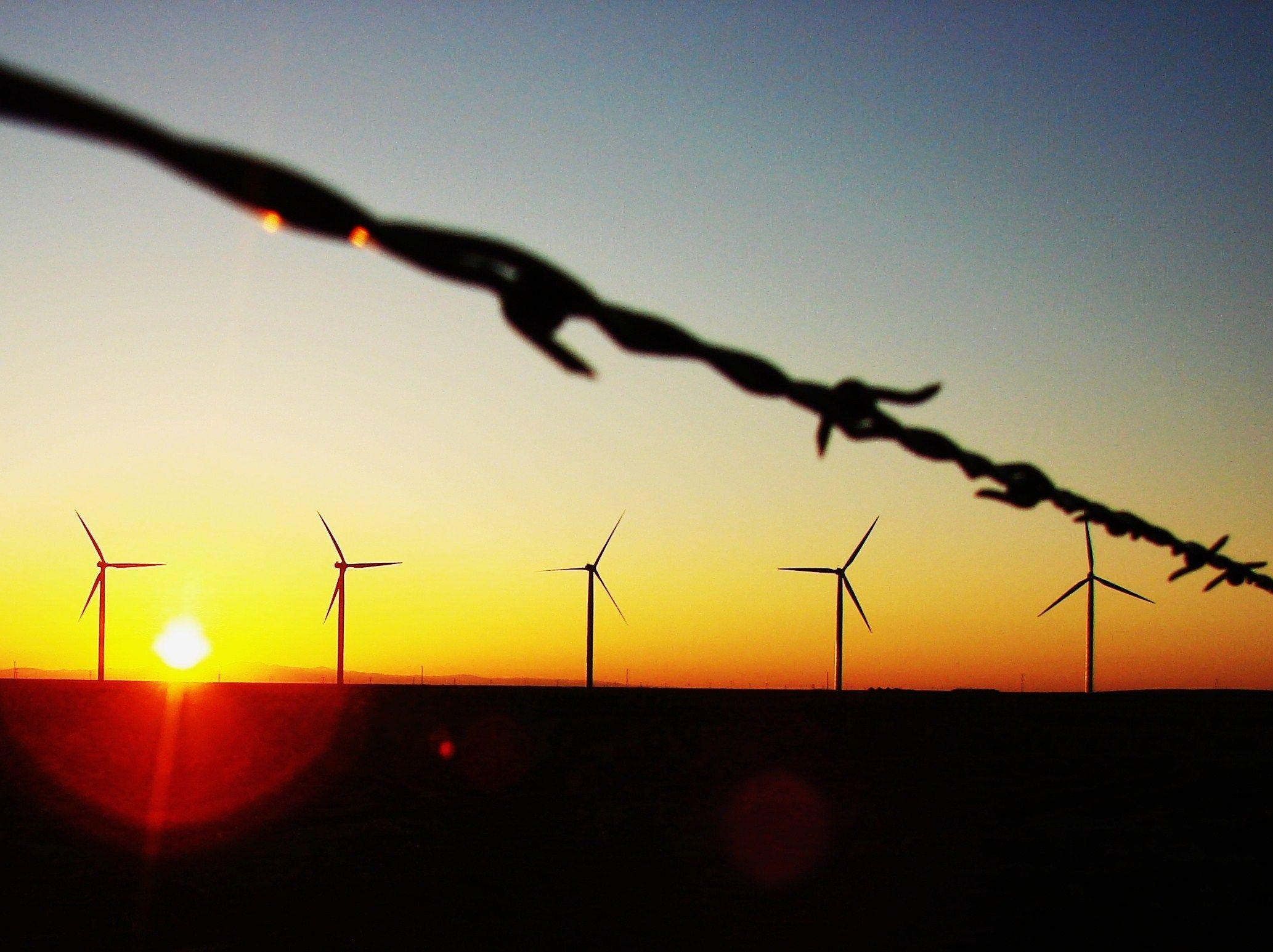 7-30-wind