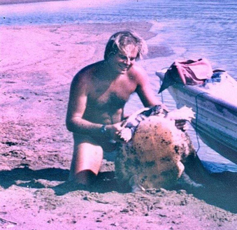 vogt-turtle-shore