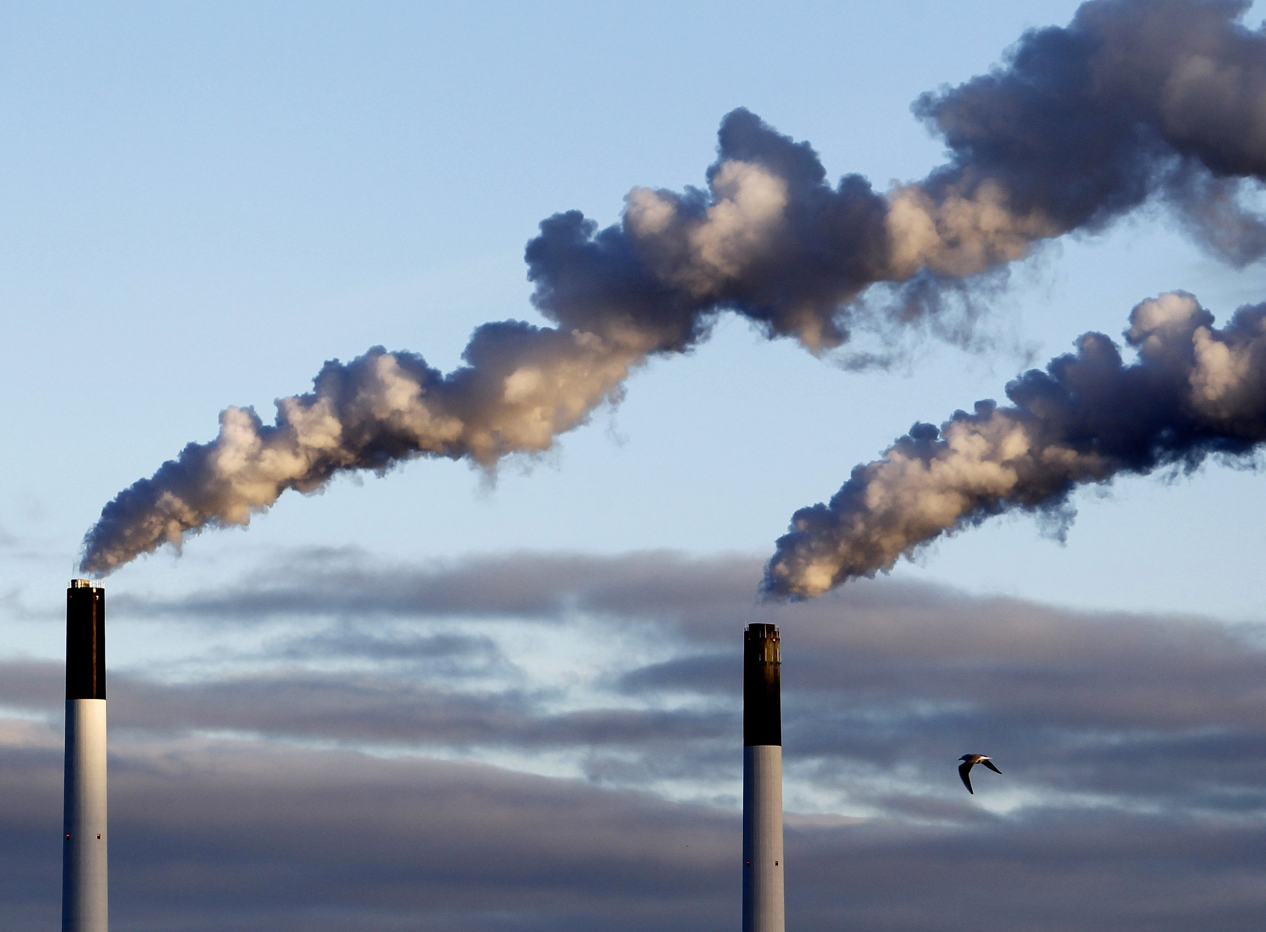 $1 Billion in UN Climate Funding Accidentally Went To Build Coal Power Plants