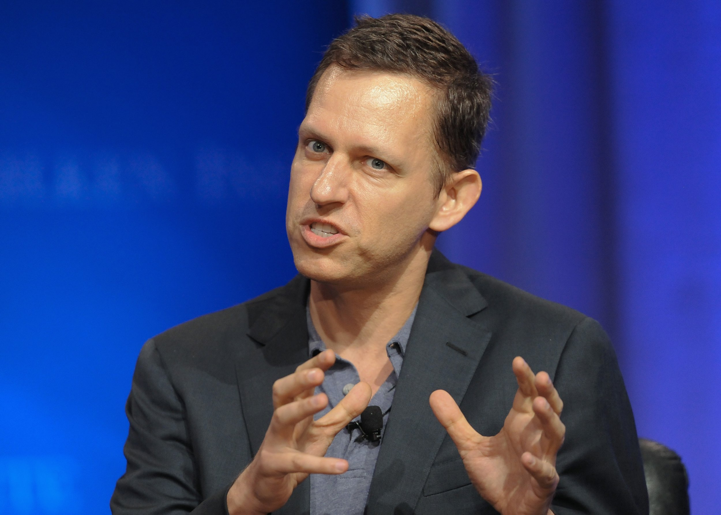 Peter Thiel, pictured in 2013.