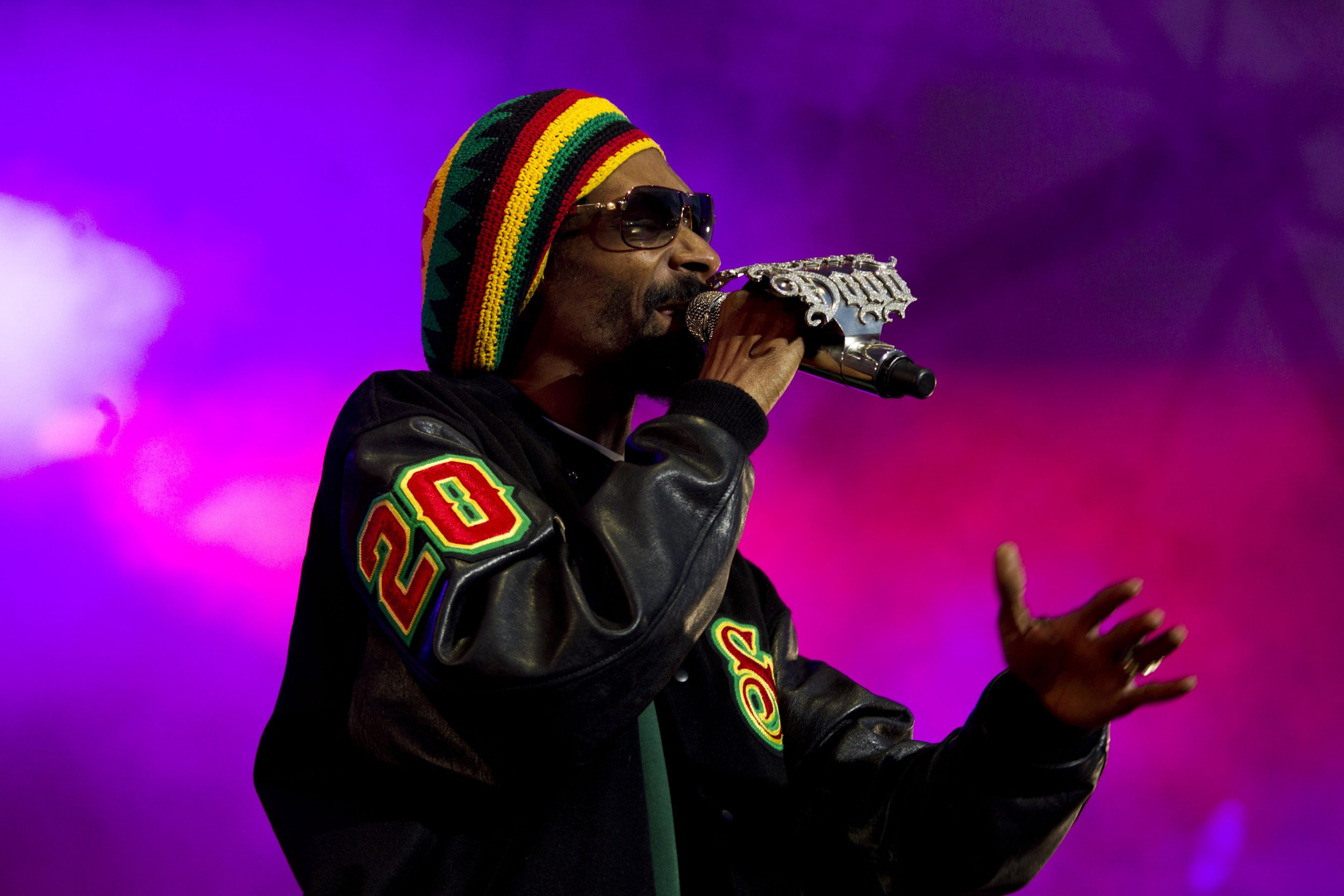 Image result for Snoop Doggy Doggy ON STAGE