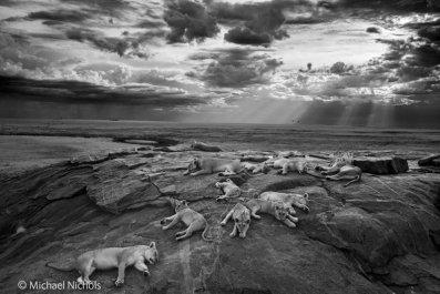 10-23-14 WPY Lions