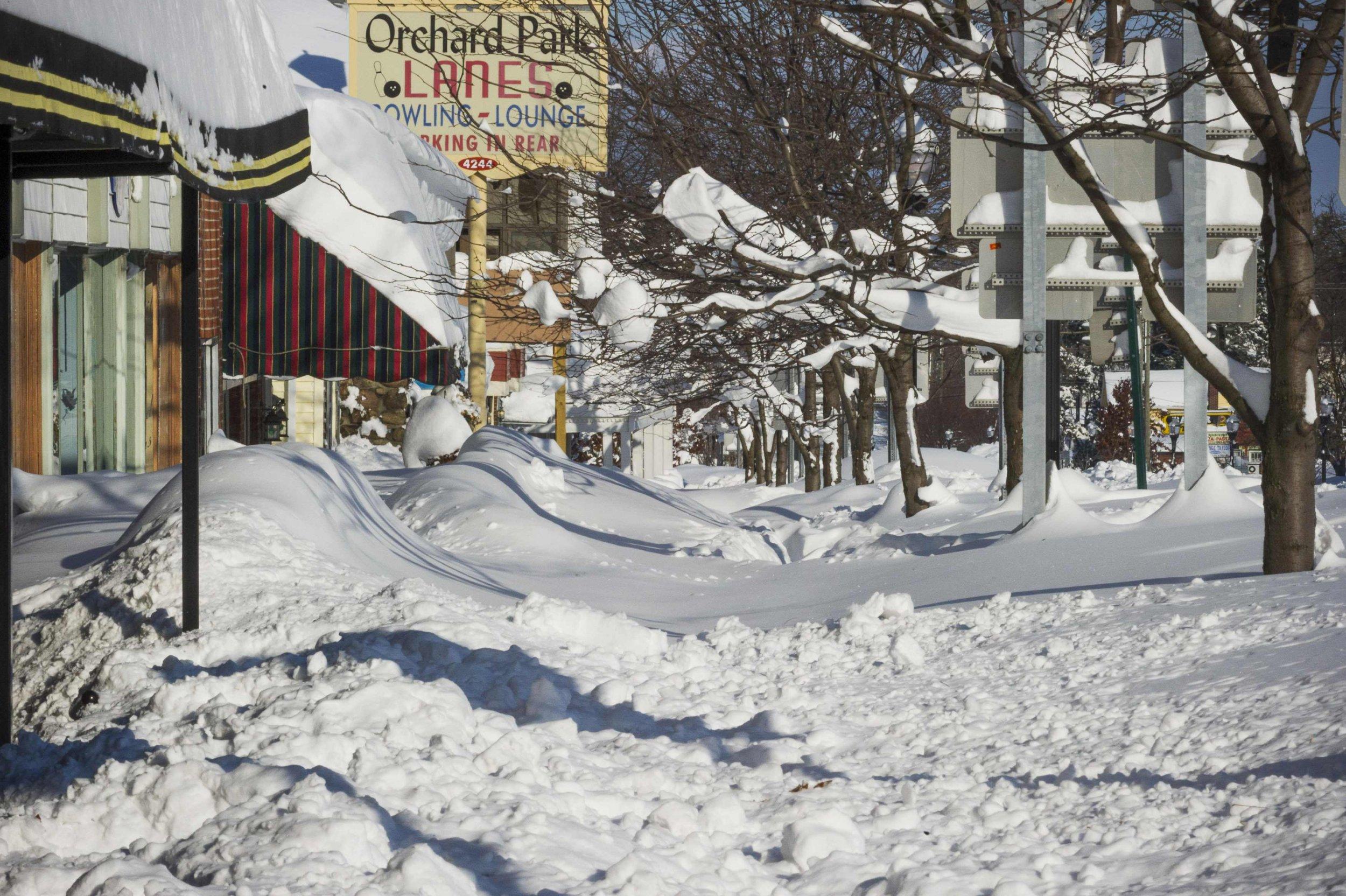 Buffalo snow