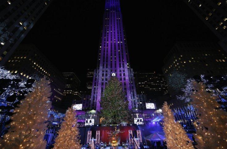 12-5-14 Christmas tree 15
