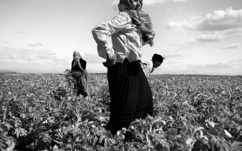 02_tunisia_women_laborers