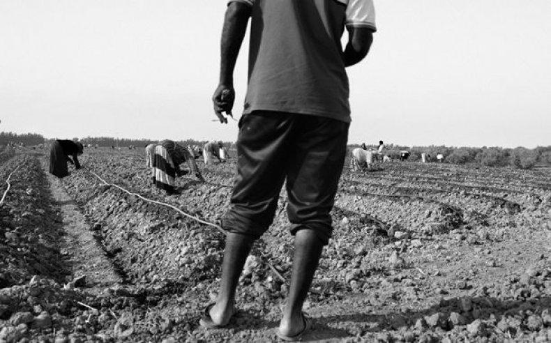 04_tunisia_women_laborers