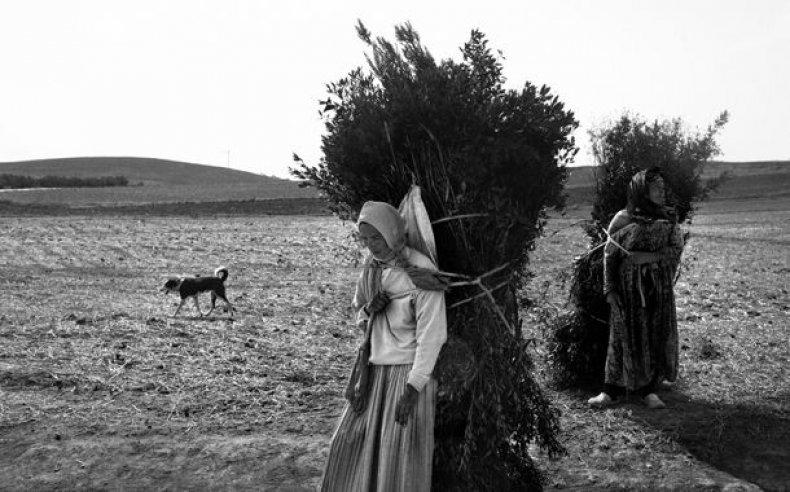 05_tunisia_women_laborers