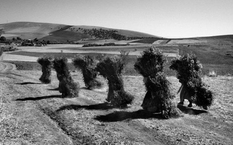 06_tunisia_women_laborers