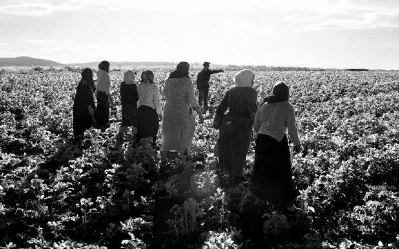 17_tunisia_women_laborers