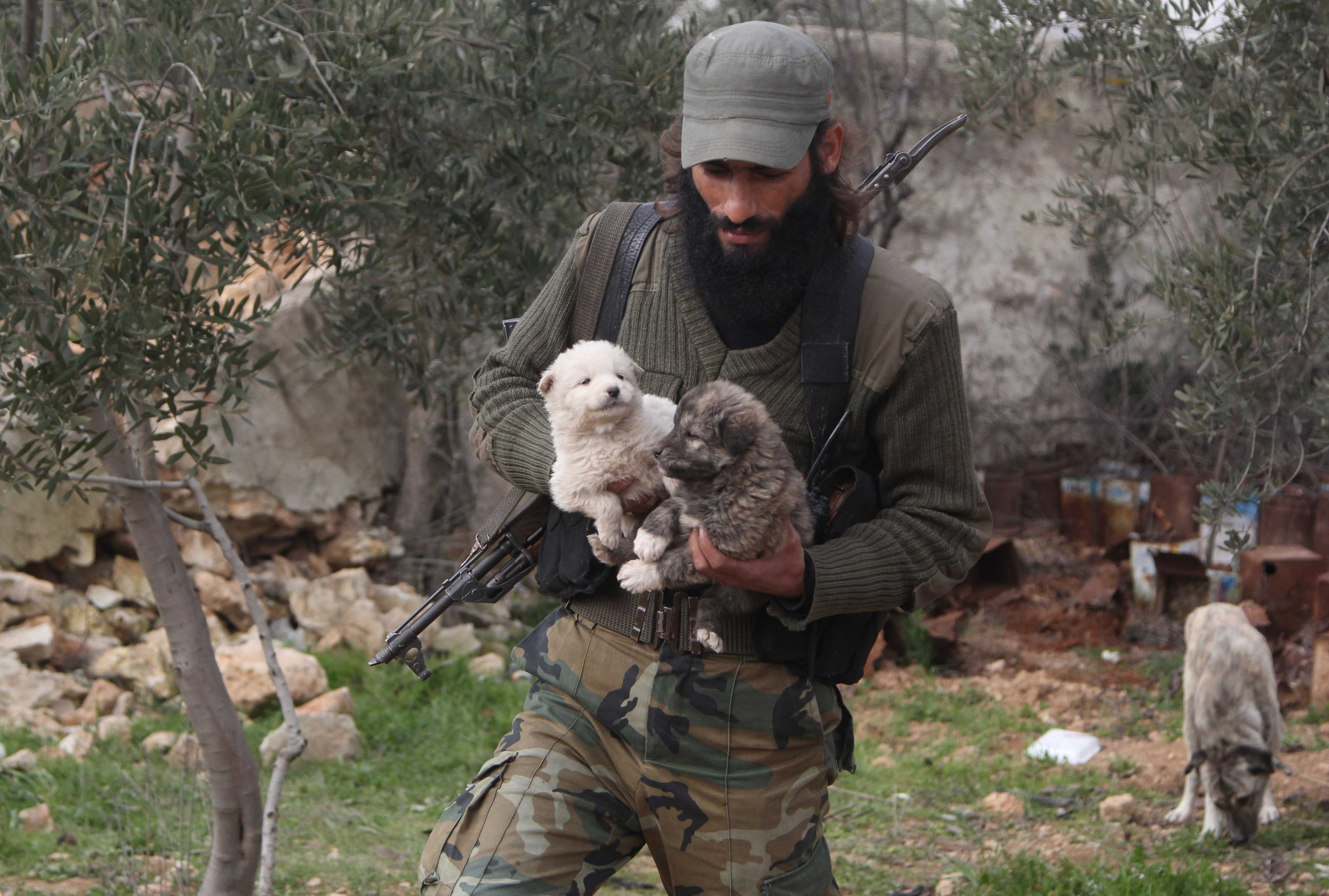 photos the free syrian army fighter who takes care of puppies