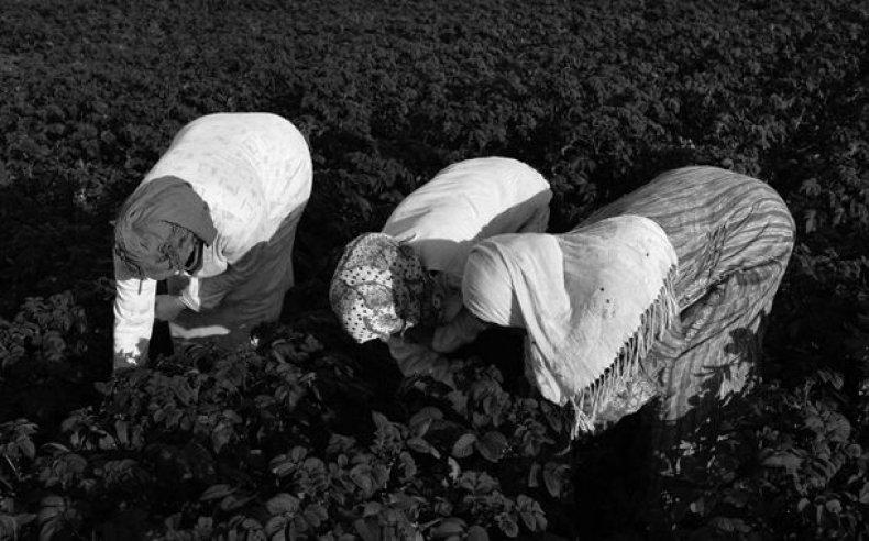 19_tunisia_women_laborers