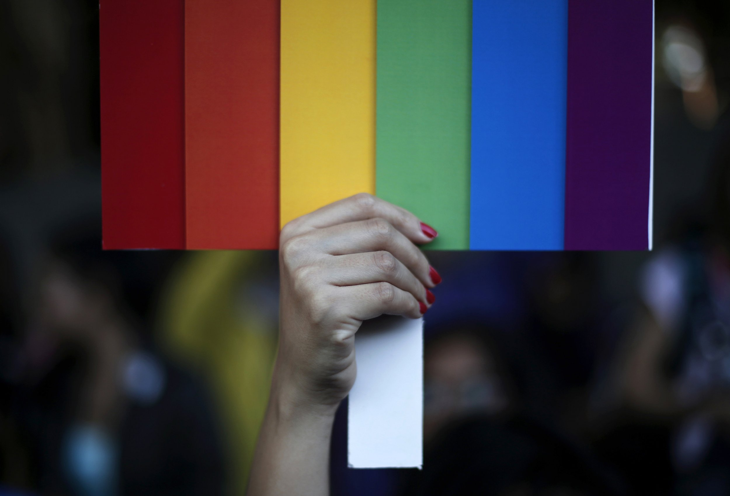 2-24-15 Pride parade flag
